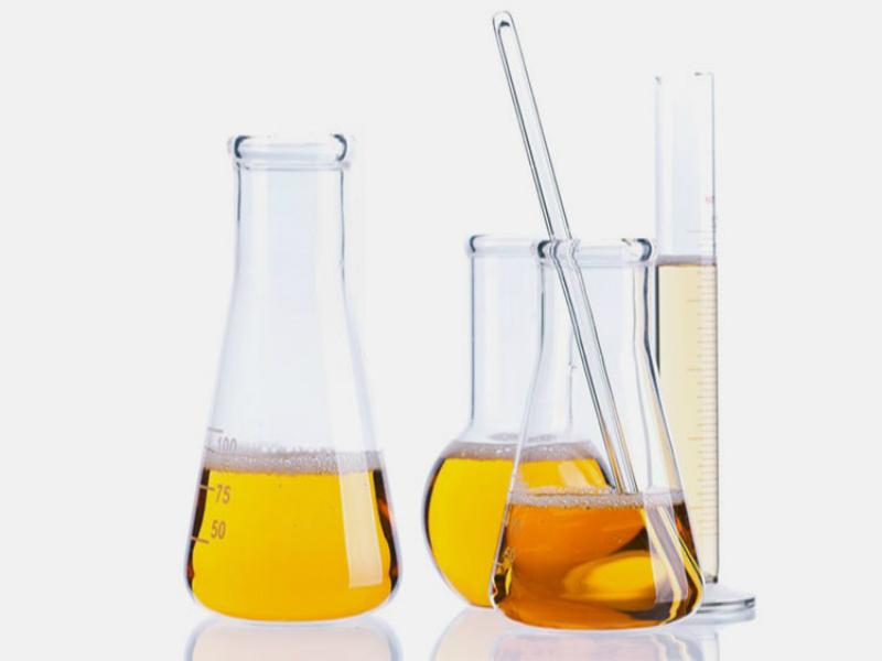 Exame de urina 24h: como funciona?