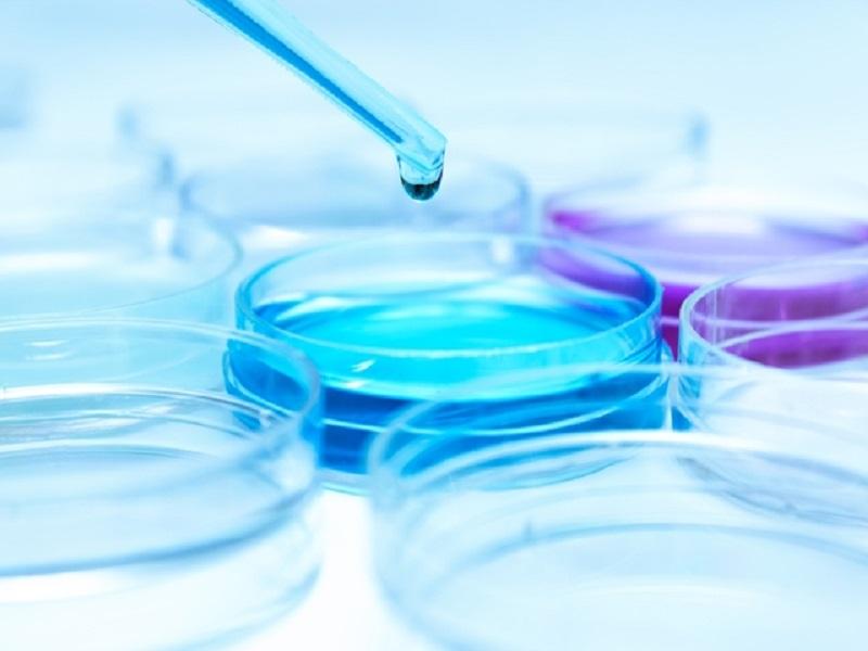 O que é espermocultura e para que serve?